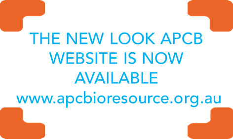 New look website ad